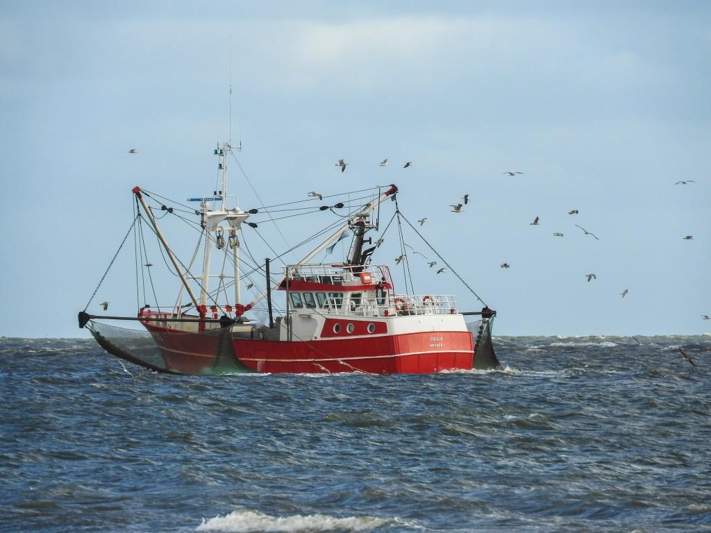 HV35 fiskeri på hav